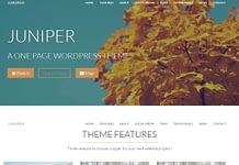 Juniper - Premium WordPress One Page Theme