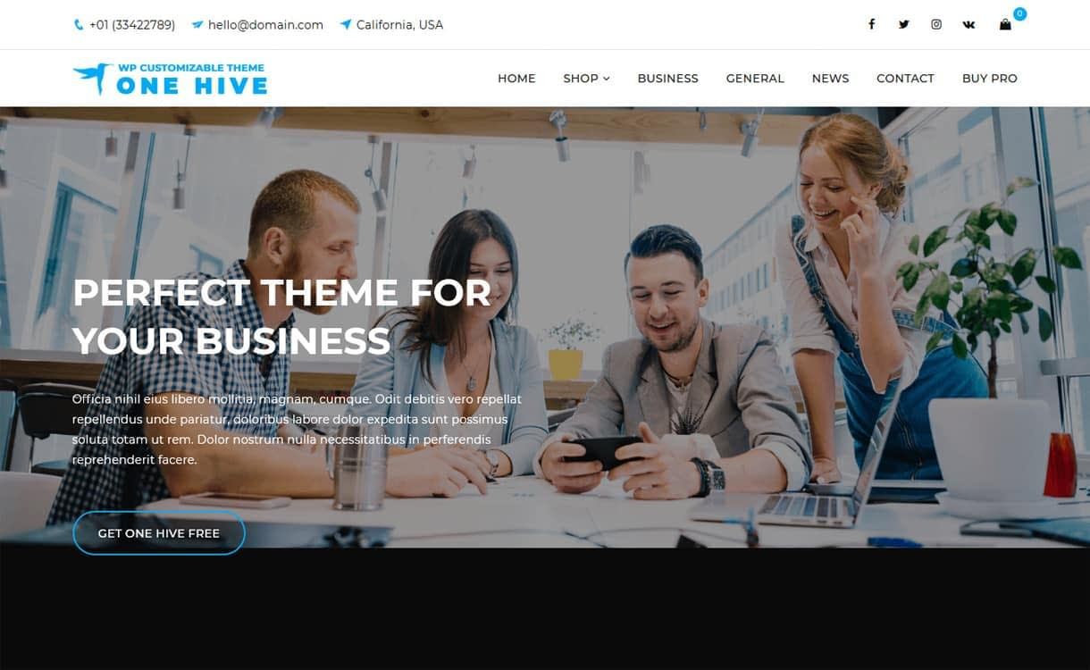 one hive - 21+ Best Free WordPress Themes May 2018