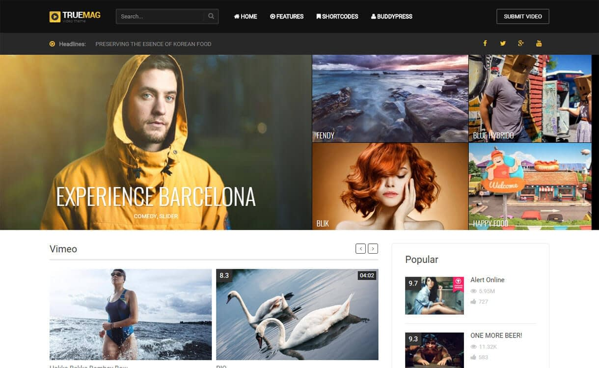 True Mag - 15+ Best Responsive WordPress Video Themes 2019
