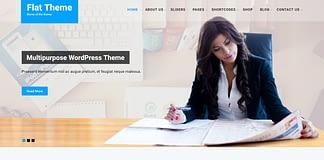 flat-theme-premium-WordPress-theme