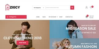 Zigcy Lite - Free E-Commerce WordPress Theme