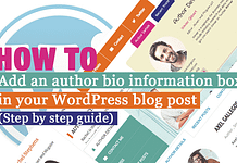 How to add an Author Bio Information Box in your WordPress Blog Post? (Step by Step Guide)