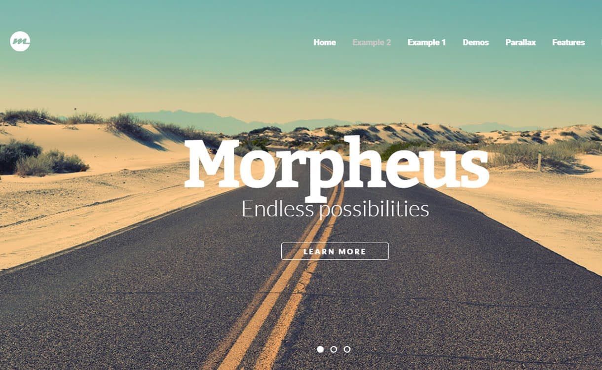 Morpheus - Best Premium WordPress One-Page Themes 2017