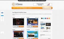 SMThemes - Professional WordPress Theme Store