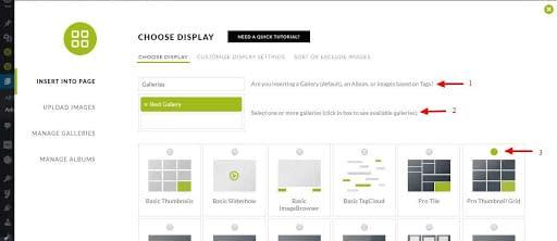 Choose Display NextGEN Gallery