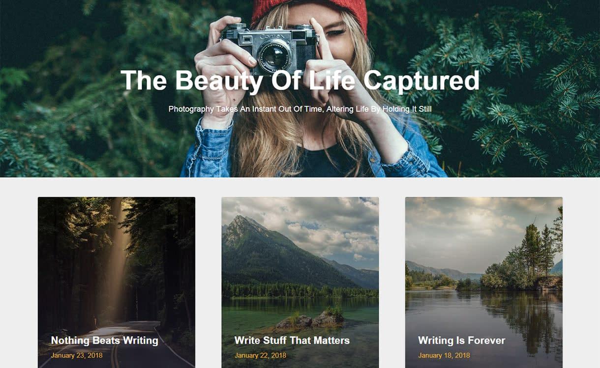 image-gridly-best-free-seo-agency-wordpress-theme