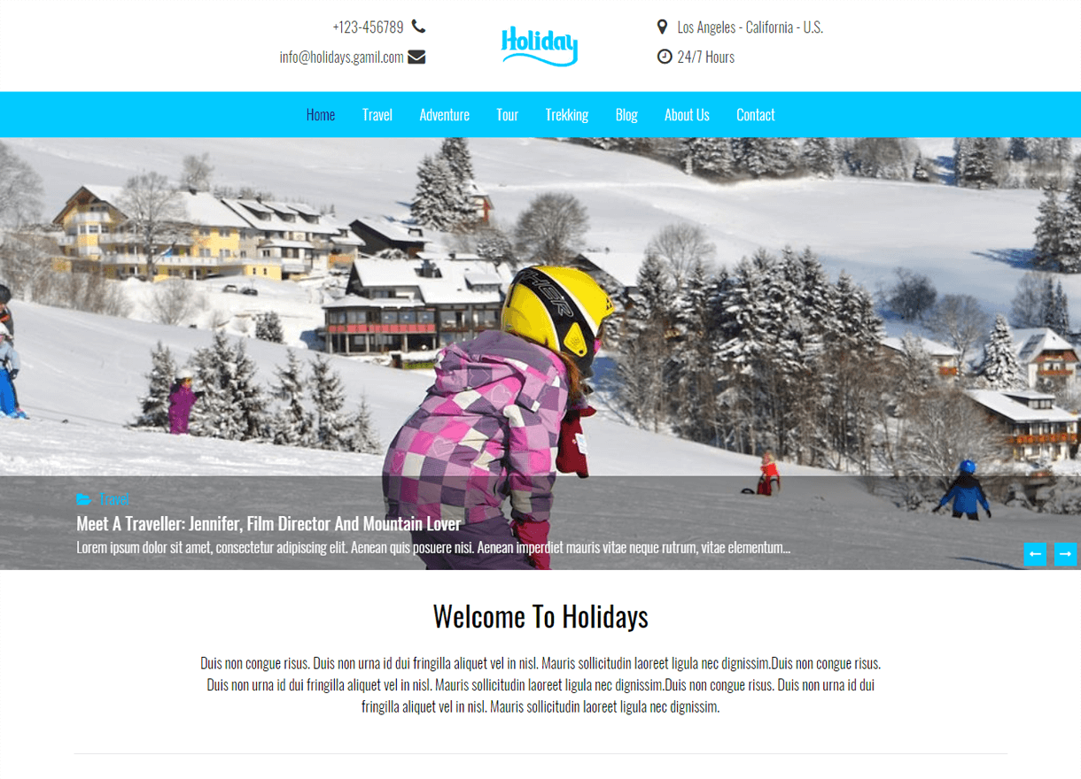 Holidays-Best Free WordPress Themes February