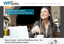 WP-Minder-Support-Theme