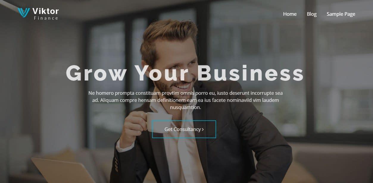 Viktor Lite - Best Free Consulting WordPress Theme