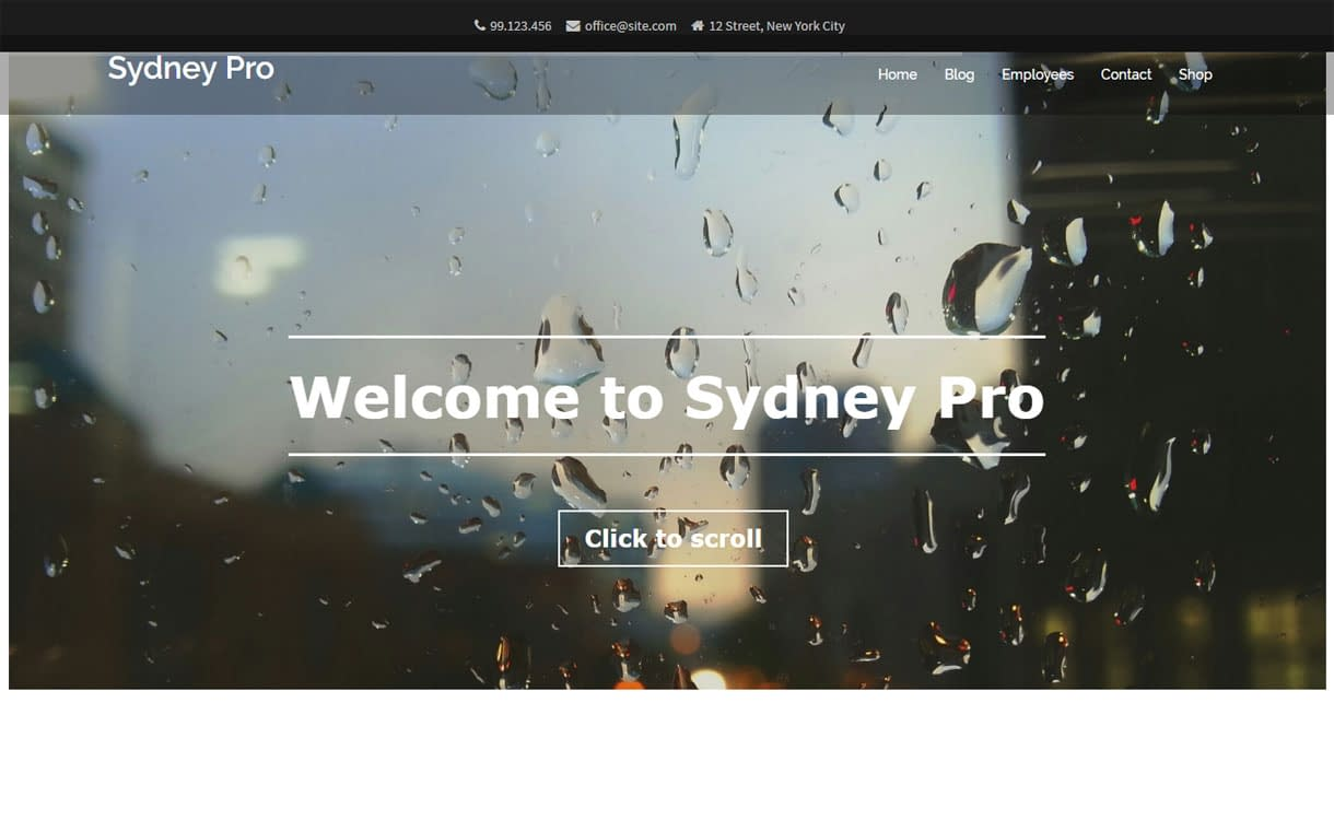 Sydney Pro - Premium Business WordPress Theme