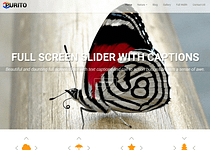 Purito - WordPress Multipurpose Theme