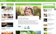 BlogSpring - Premium WordPress Blog/Magazine Theme