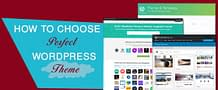 Uploaded ToHow To Choose The Perfect Wordpress Theme For Your Website
