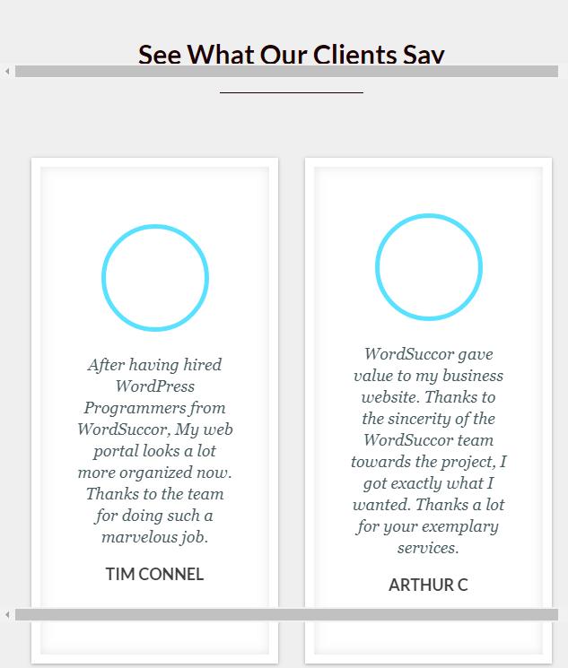 WordSuccor Customization Service Client Portfolio