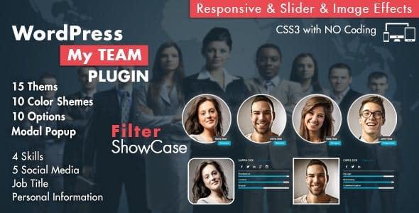 5+ Best WordPress Team Showcase Plugins