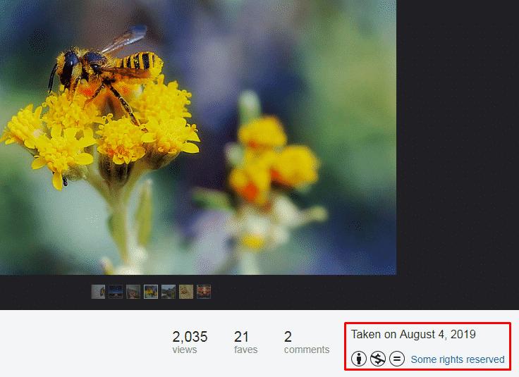 Flickr Photo