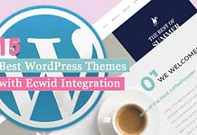 Best WordPress Themes With Ecwid Integration