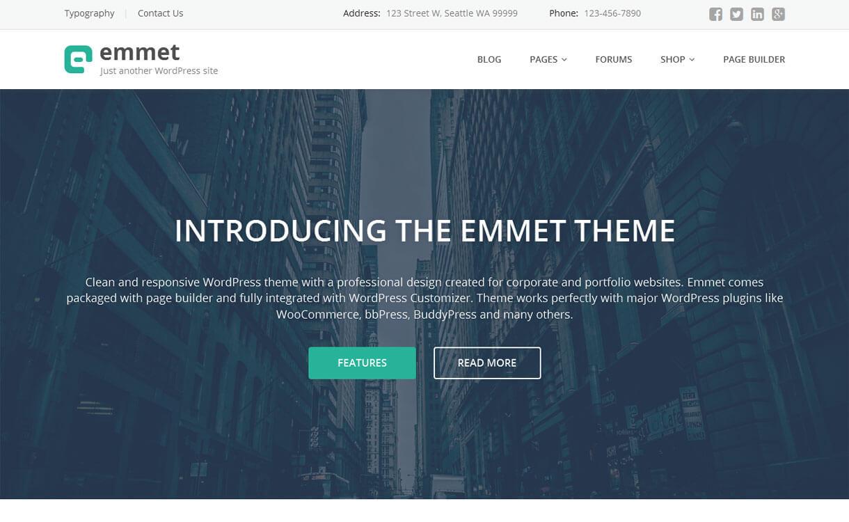 emmet best wordpress ecommerce themes