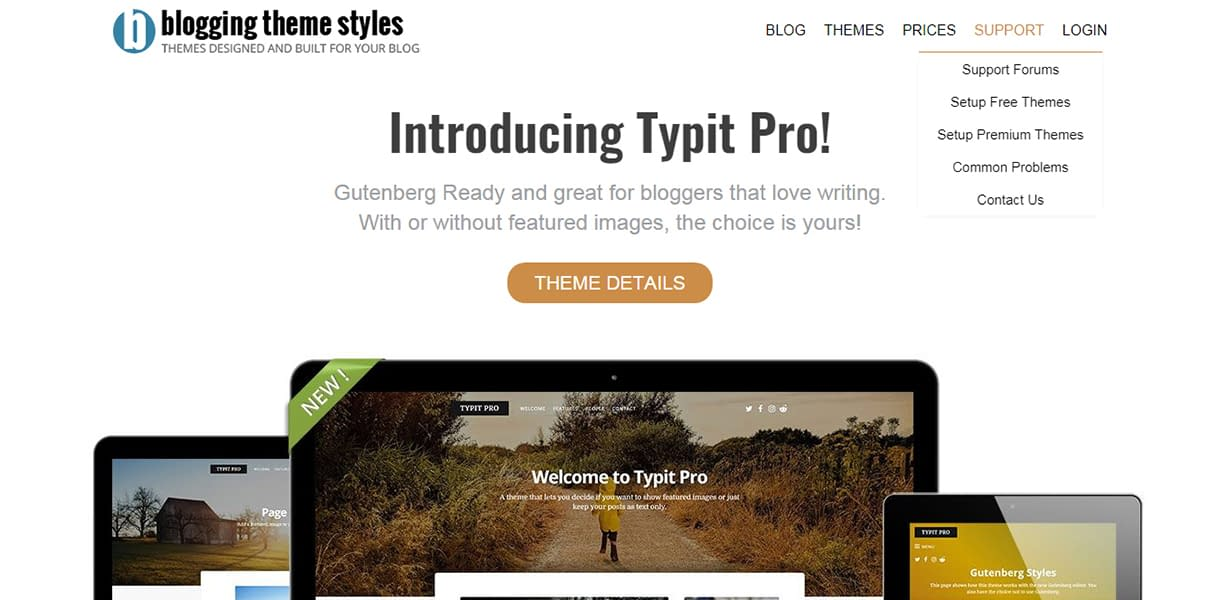 Blogging Theme Styles - Black Friday and Cyber Monday Deal 2018