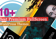 Best Premium Fullscreen WordPress Themes