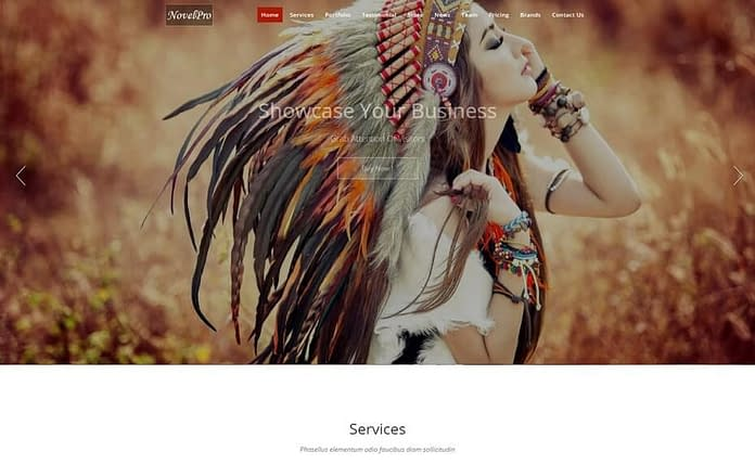 Novel Pro Premium WordPress theme