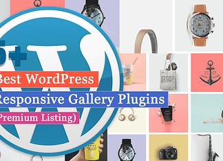 5+ Best WordPress Gallery Plugins (Premium Listing)