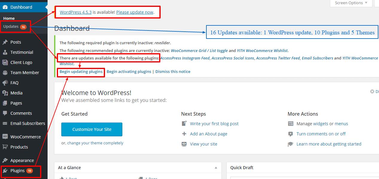 update wordpress themes and plugins
