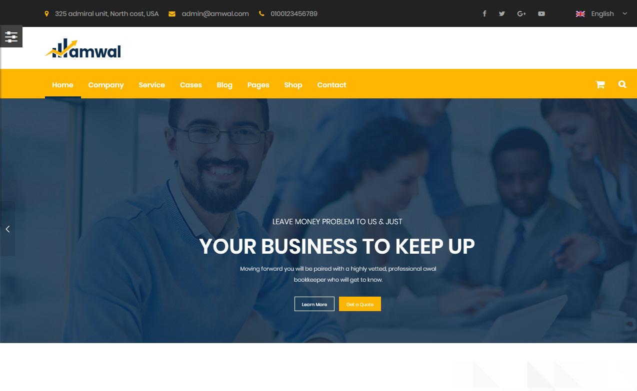 10+ Best Premium Accounting WordPress Themes
