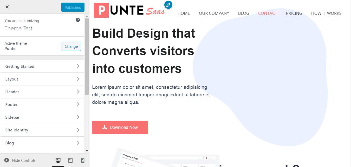 Punte WordPress Theme Customizer