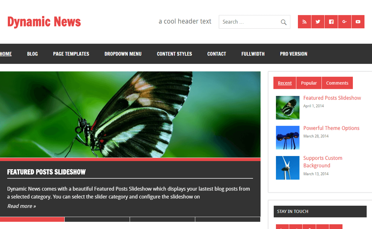 Dynamic News-Best Free WordPress News-Magazine/Online Editorial Themes