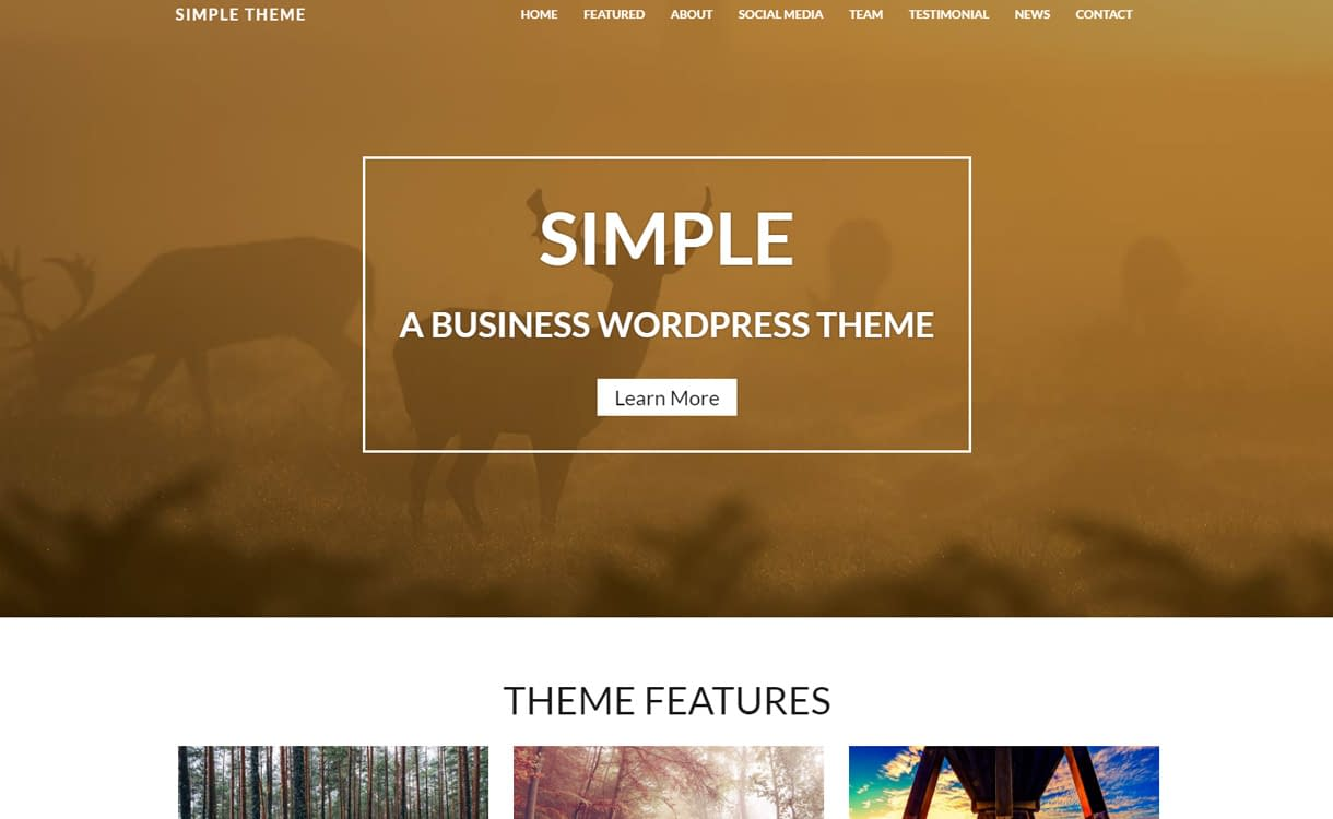 Simple - Premium WordPress Business Theme