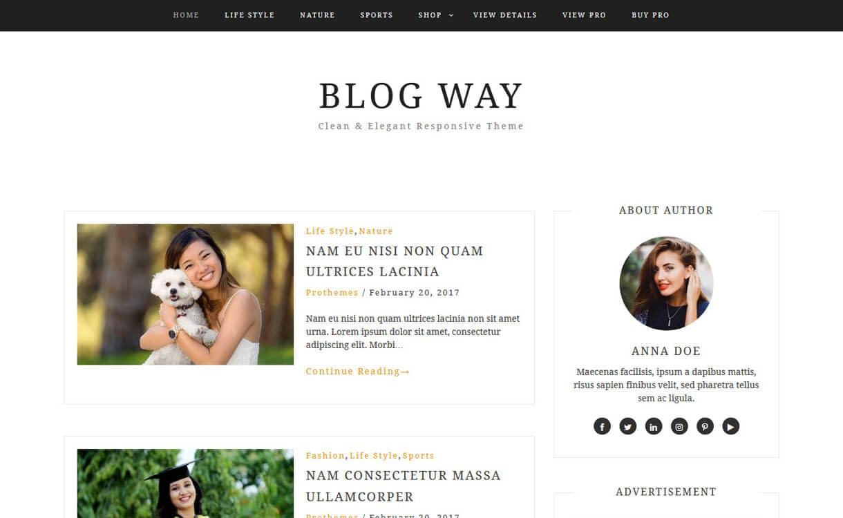 30+ Best Free WordPress Blog Themes for 2020