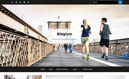 Blogism - Minimal Blogging WordPress Theme