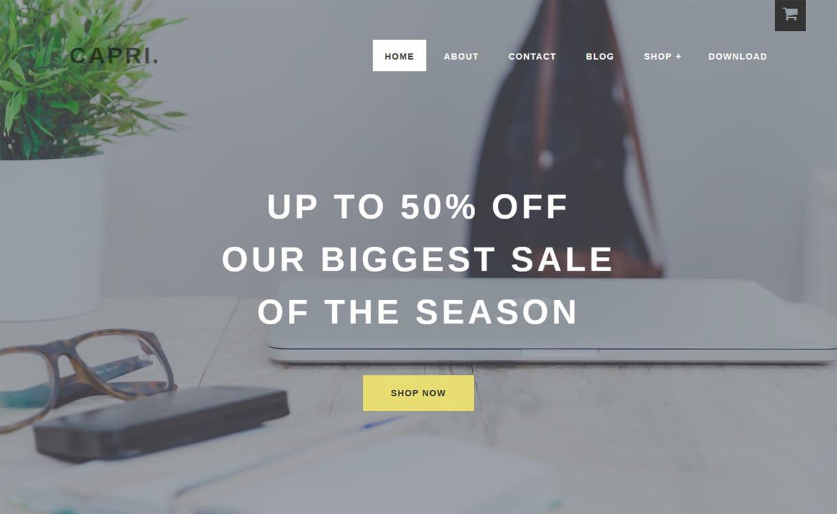 Capri Pro-Best Premium WordPress eCommerce WooCommerce Online Store Themes 2018