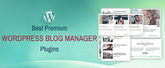 WordPress Blog Manager Plugins