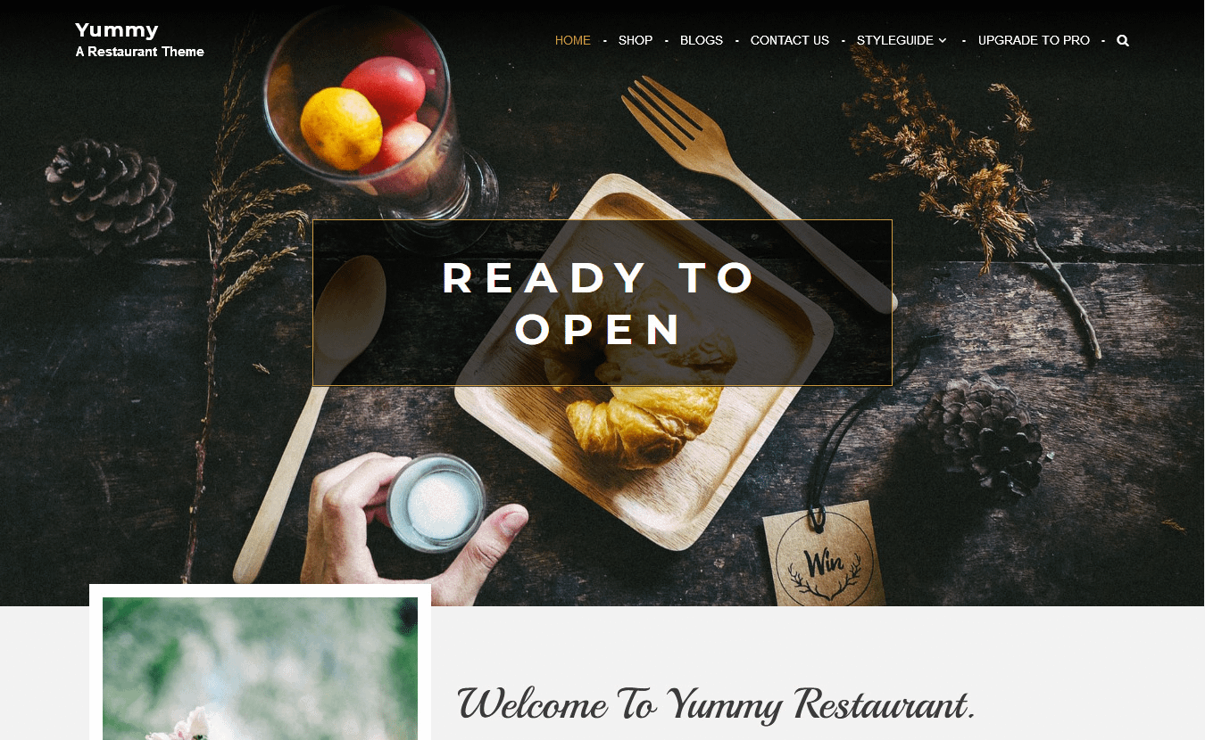 10+ Best Free Bar and Pub WordPress Themes