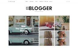 TheBlogger - Premium WordPress Blog Theme