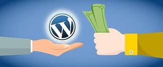 Sell WordPress Themes and Plugins