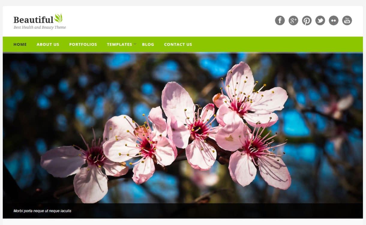 beautiful-best-premium-spa-beauty-wordpress-theme