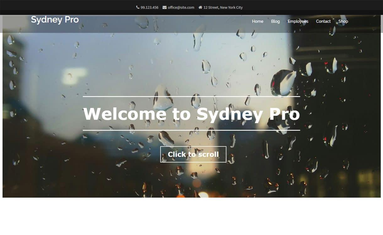 Sydney Pro - Premium Business WordPress Theme