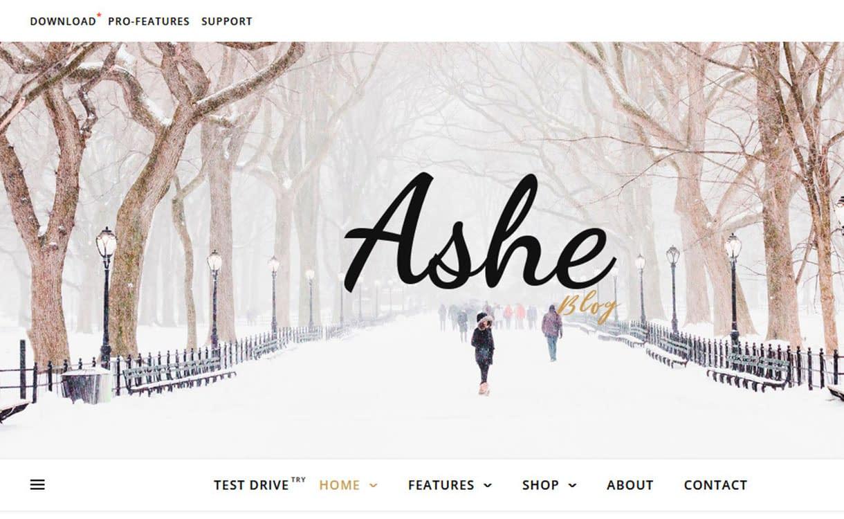 ashe-best-free-fullscreen-wordpress-theme