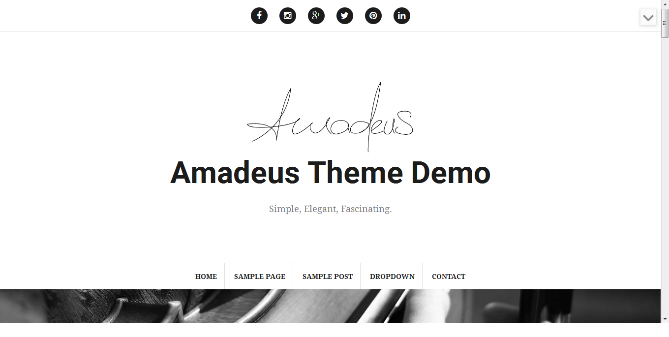Amadeus - Best Free WordPress Personal/Professional Blog Themes