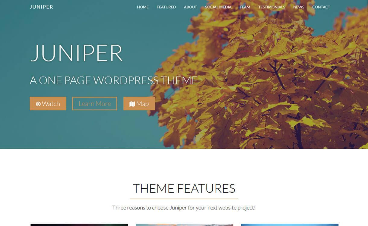 Juniper-Best Free One Page WordPress Themes