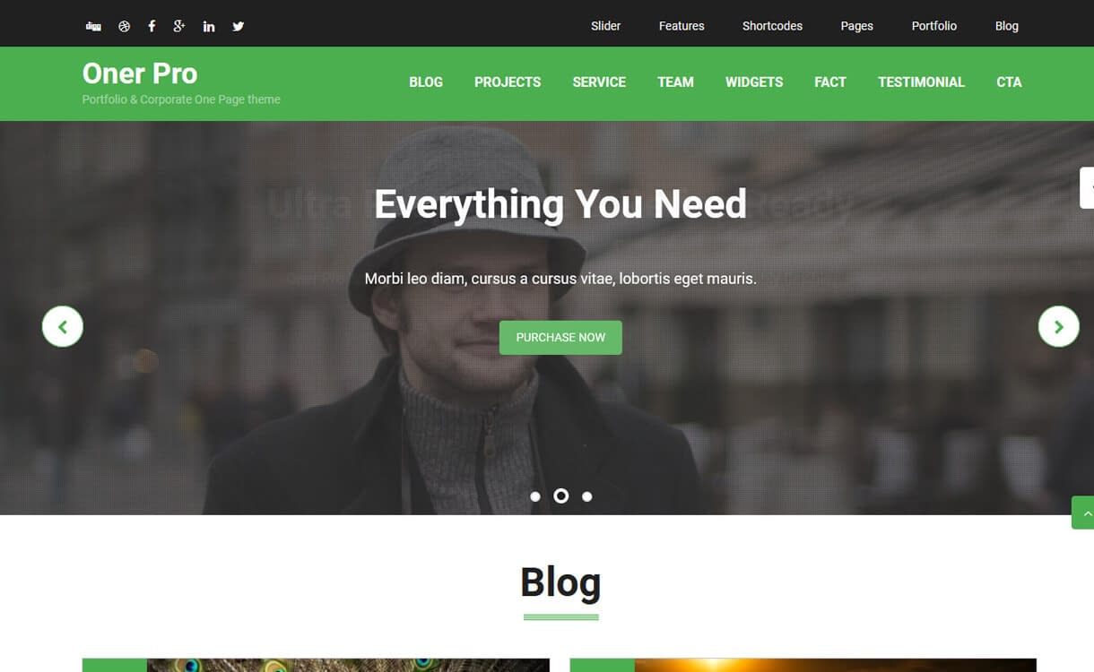 Oner-Best Free One Page WordPress Themes