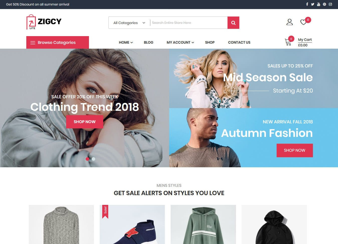 17+ Responsive Free eCommerce WordPress Themes for 2020
