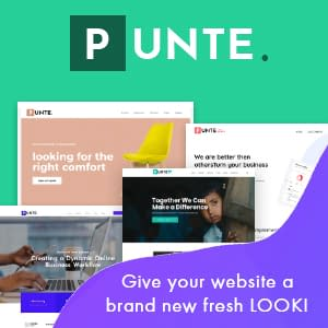 Punte - Elementor WordPress Theme