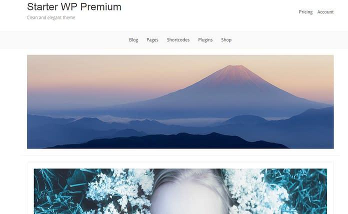 Starter WP - Free Ecommerce WordPress Theme