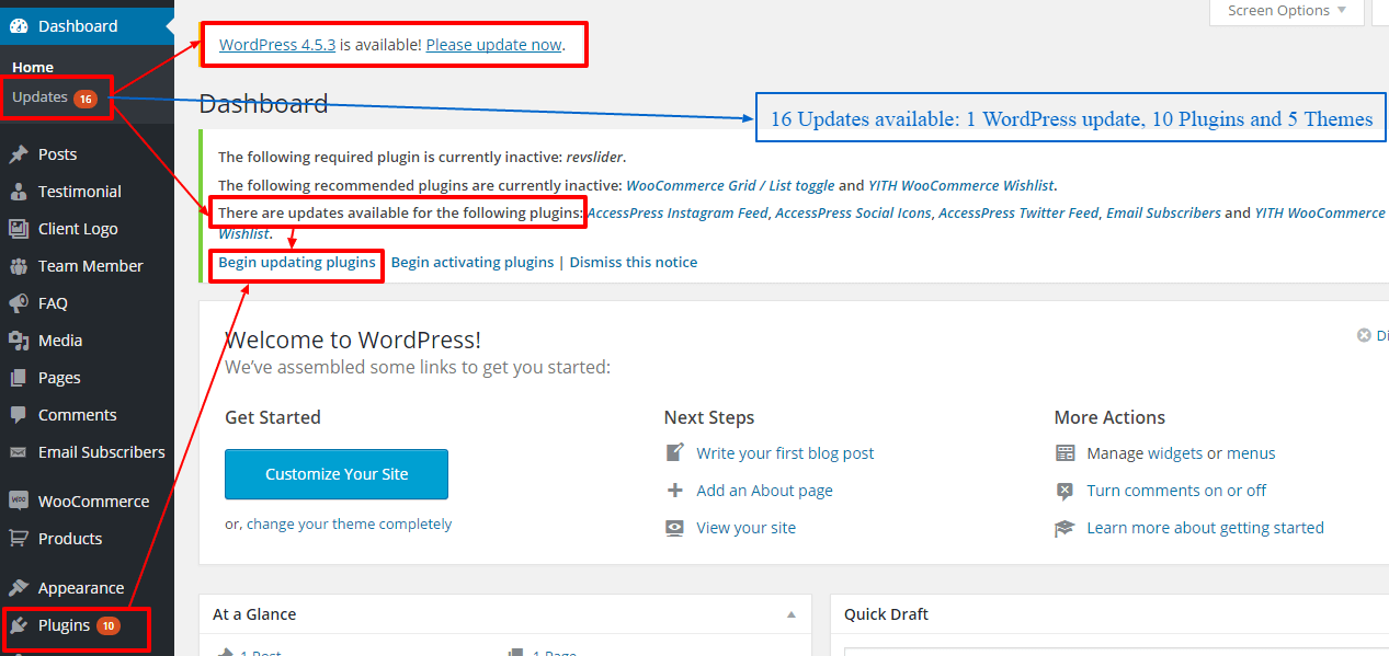 update wordpress themes and plugins