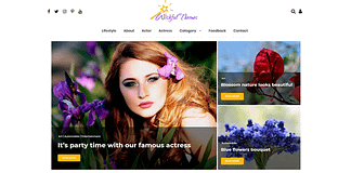 Wishful Blog - Free WordPress Blog Theme