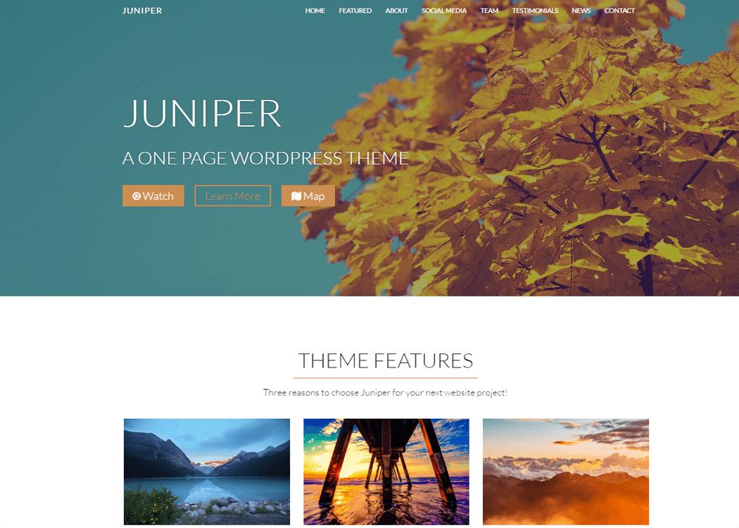 Juniper - WordPress One page Theme